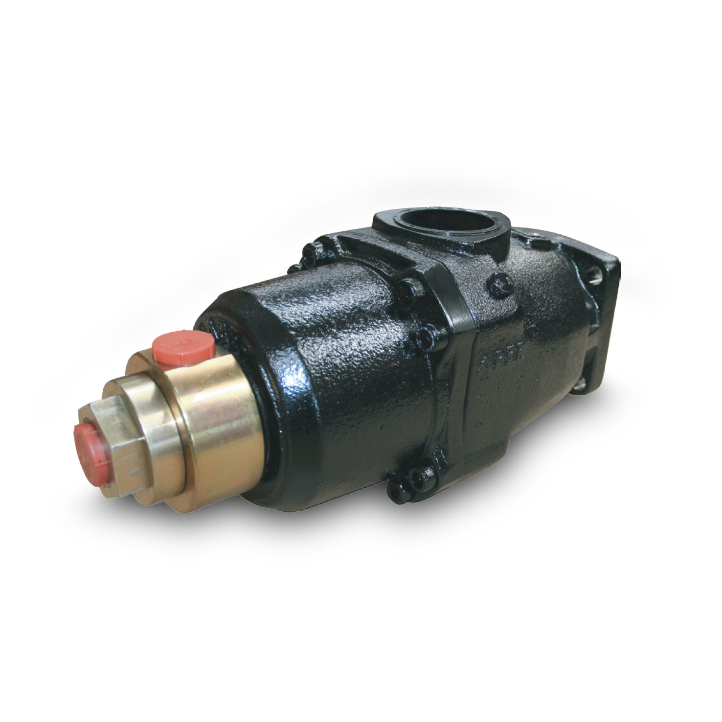 Double Straight Piston Pumps - BHD series - Back view